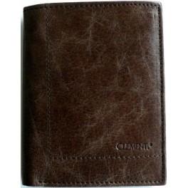 BROWN PANELKA - pánská kožená peněženka